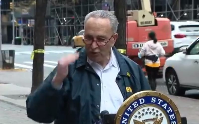 Video: Chuck Schumer Hints at Rigged Election 'Biden Will be Installed'
