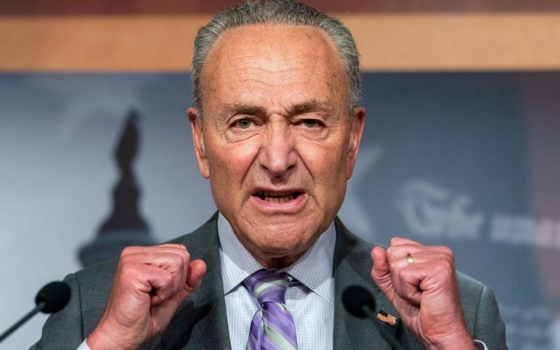 Chuck Schumer Caught on Camera Discussing Trumps 'ERECTION'