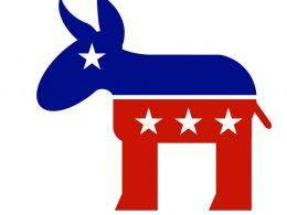 Democrat Representative Admits!