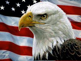 VIDEO: Patriotic American Birth